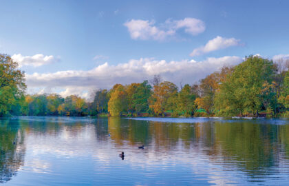 Wanstead-Park-Lake-stitched